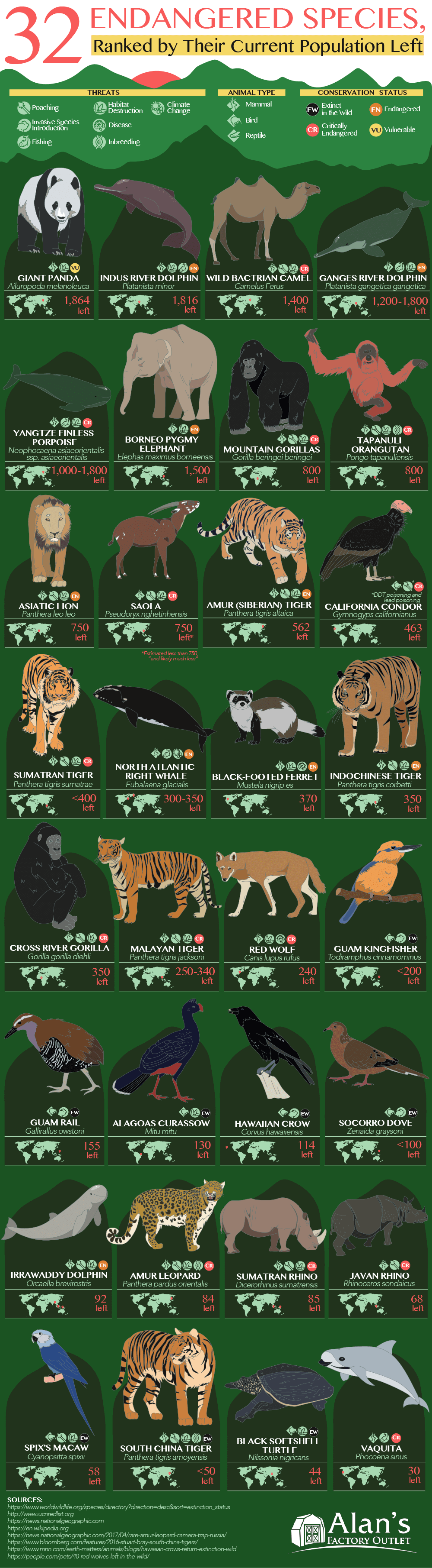 32-endangered-species-ranked-by-populaton-left-4