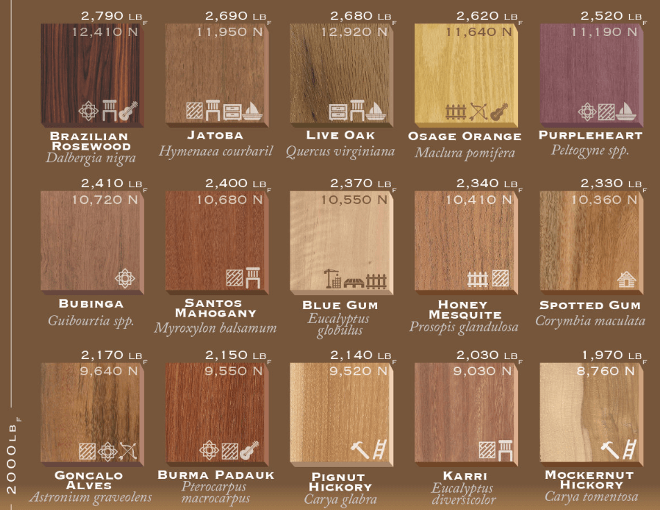 75-types-of-wood-ranked-by-janka-hardness-3_thumb